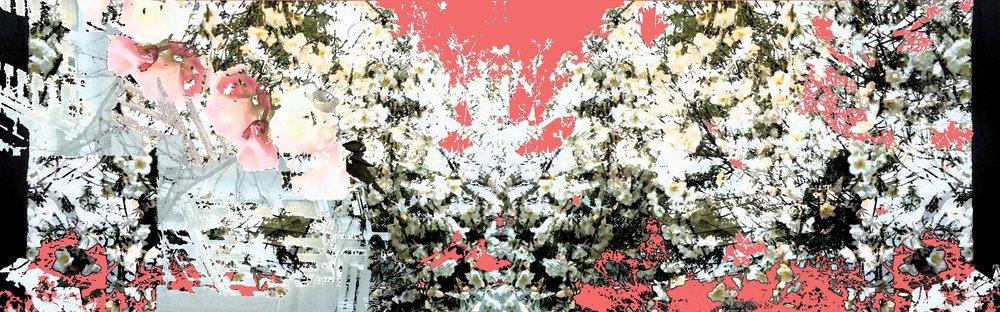 peachwhite.urbanscapes.source.Website Banner.jpg