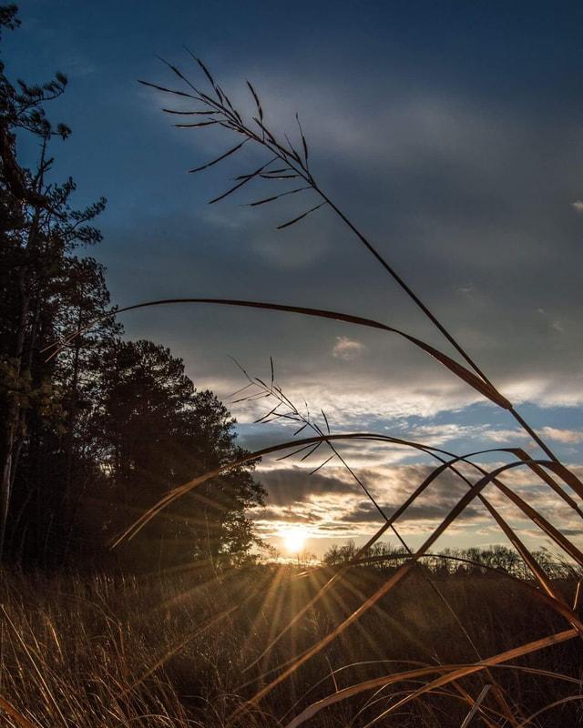 sunset-1_1_orig.jpg