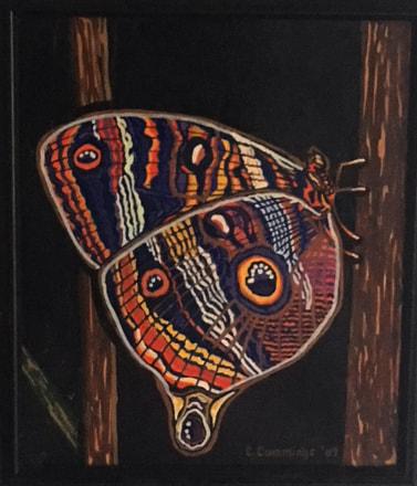 moth-2_1_orig.jpg