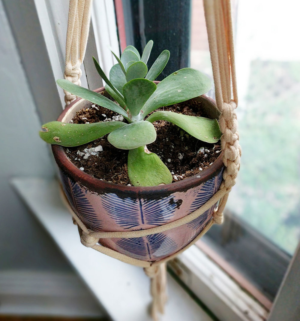 Macrame-Plant-Hanger-2.jpg