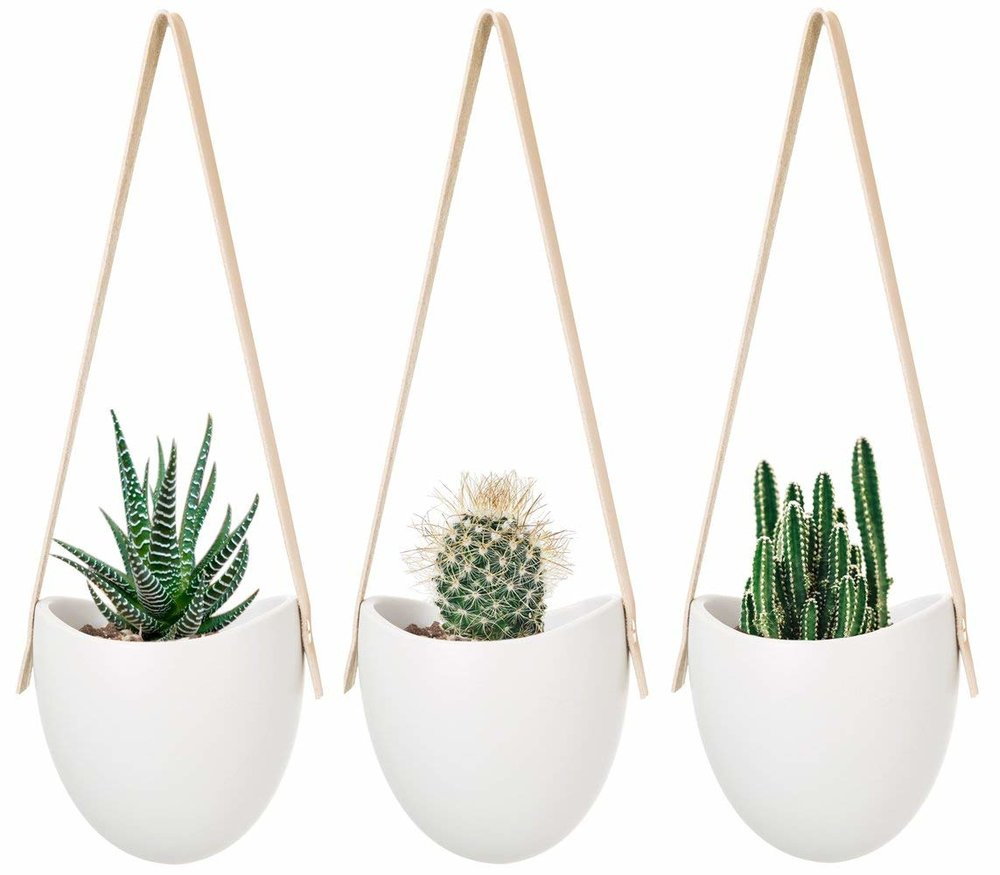 Hanging Ceramic Planter - Hanging plants elevate your space. They say, we're so free-spirited, we don't need to be on a table. We can hang from anything because we're that whimiscal. Then they go go to burning man.