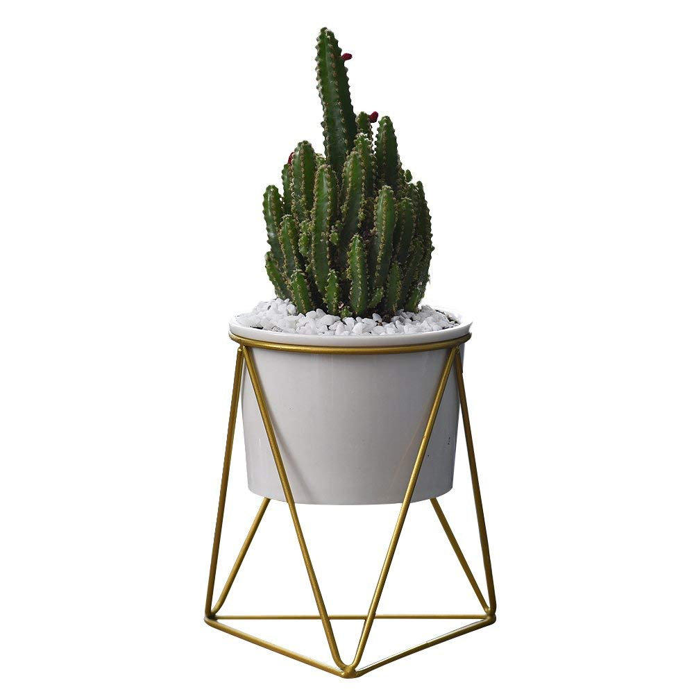 Raised Gold Planter - You can really up the ante and go with a raised planter to fill with colored or opalecent rocks. This version is design savvy and so cute.