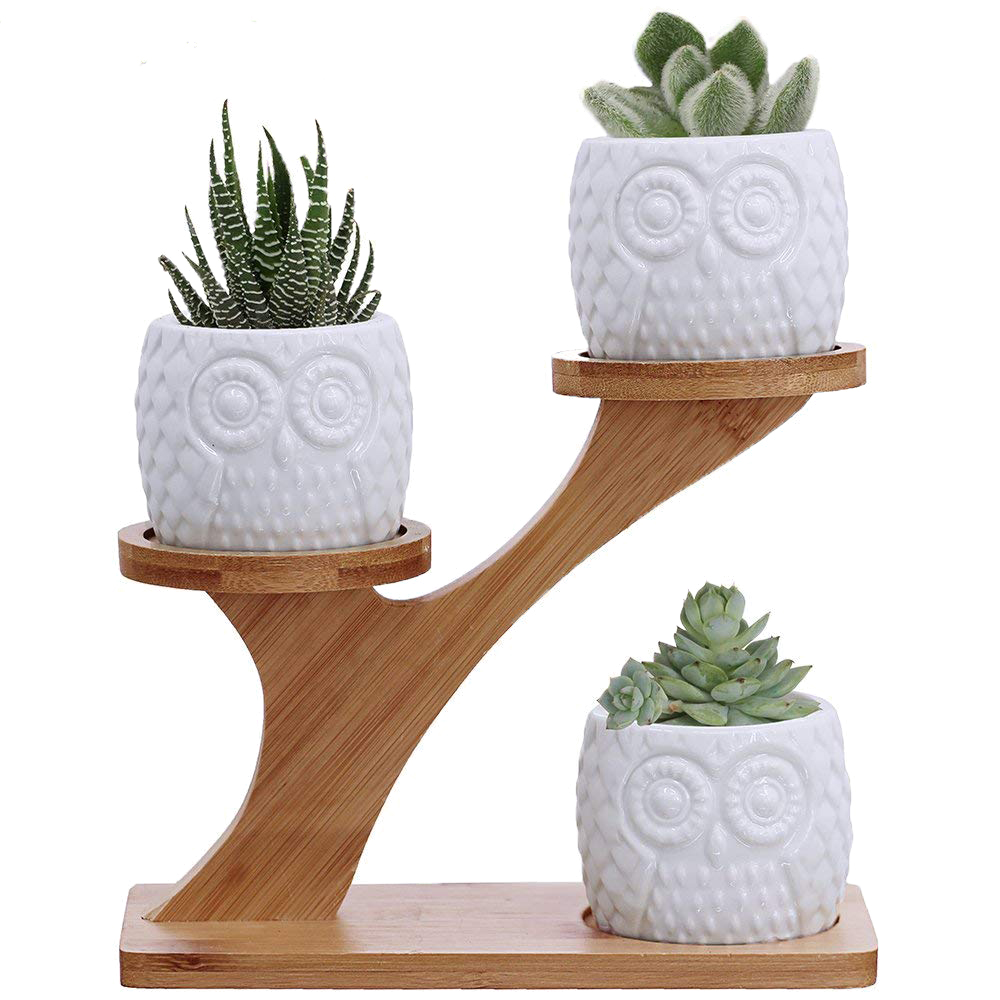Owl Ceramic Branch - These sweet, vintage-inspired owls have a cool white finish and fun perching branch that is perfect in on your desk or in your kid's room,