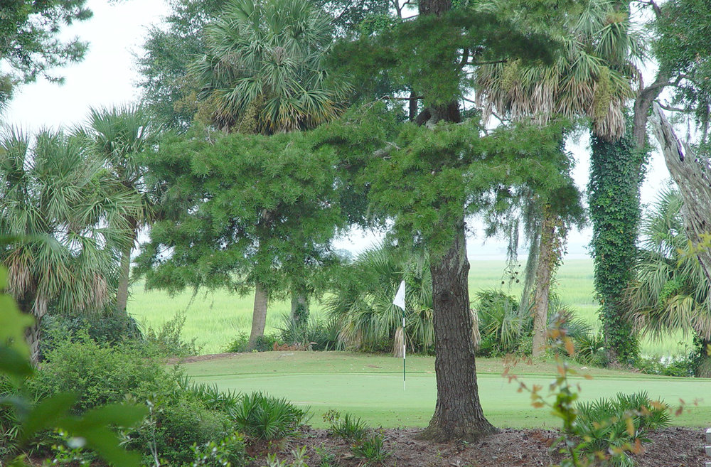 Spring Island golf 03.jpg
