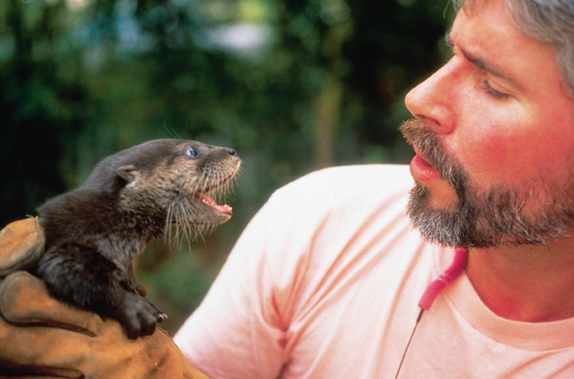 Spring Island Trust - First Naturalist Baby Otter.jpg
