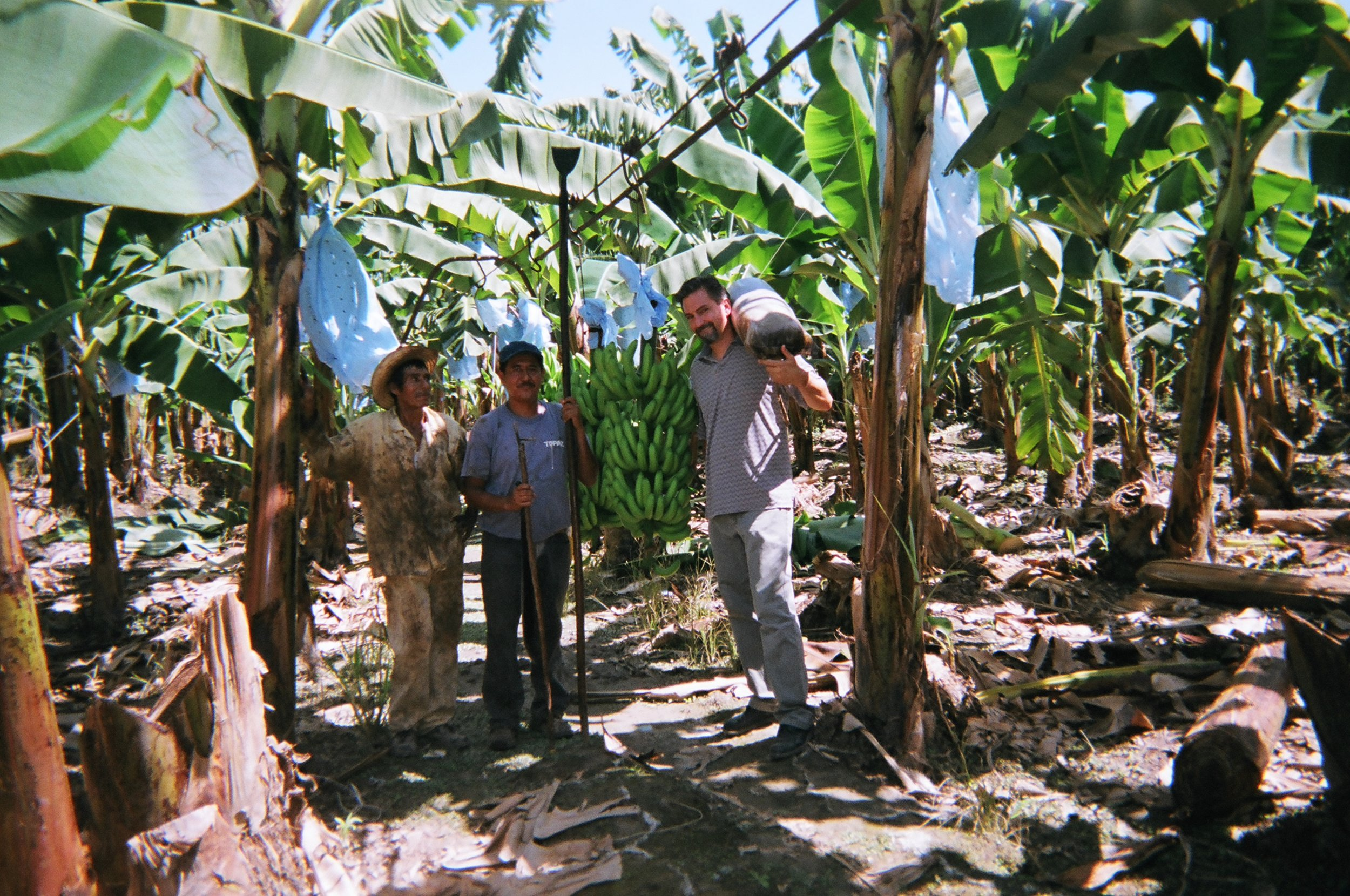 Learning about how things are done to harvest bananas in Guatemala 6 days a week for $200 dollars a month on the best paying jobs.