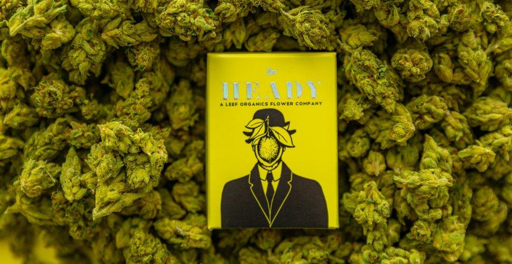 leef-organics-heady-580.jpg