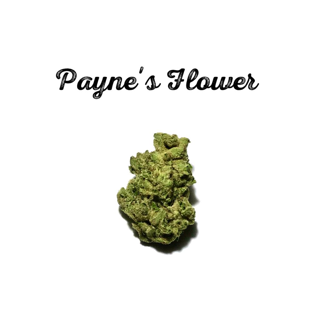 Payne's Flower.png