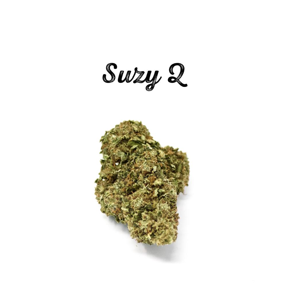Suzy Q.png