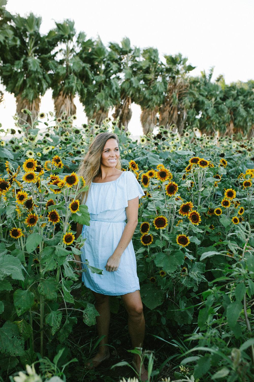 Oahu Sunflower Filed