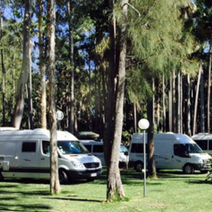 Twin Dolphins Holiday Park - Tuncurry