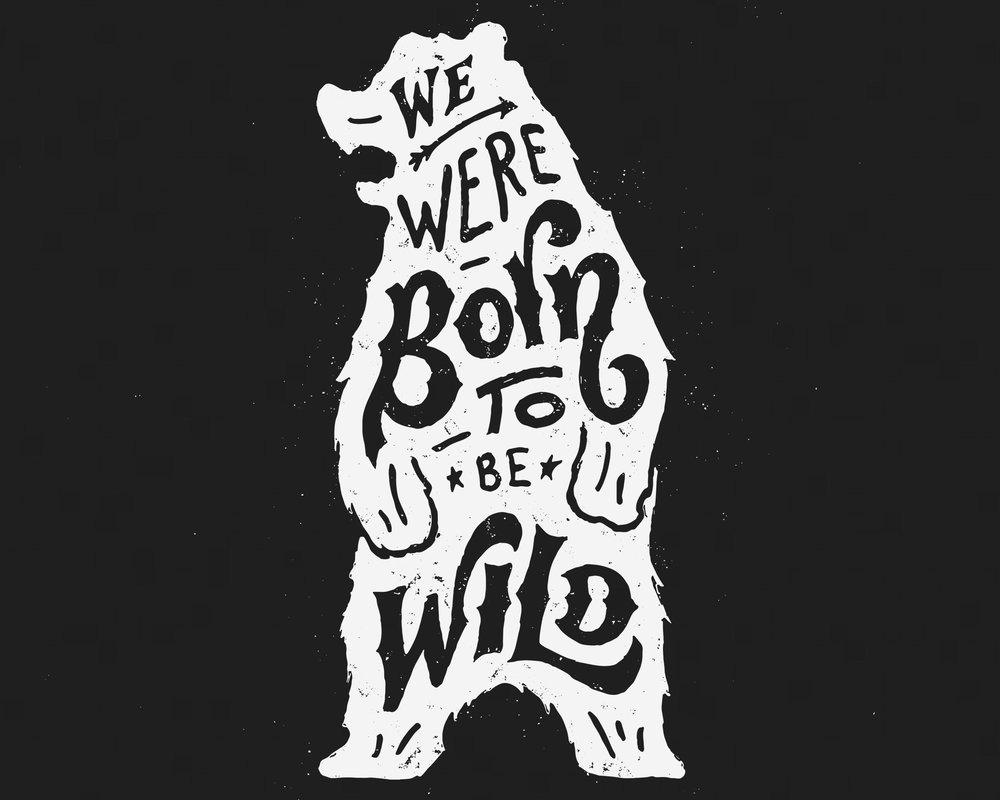 We Were Born To Be Wild.jpg