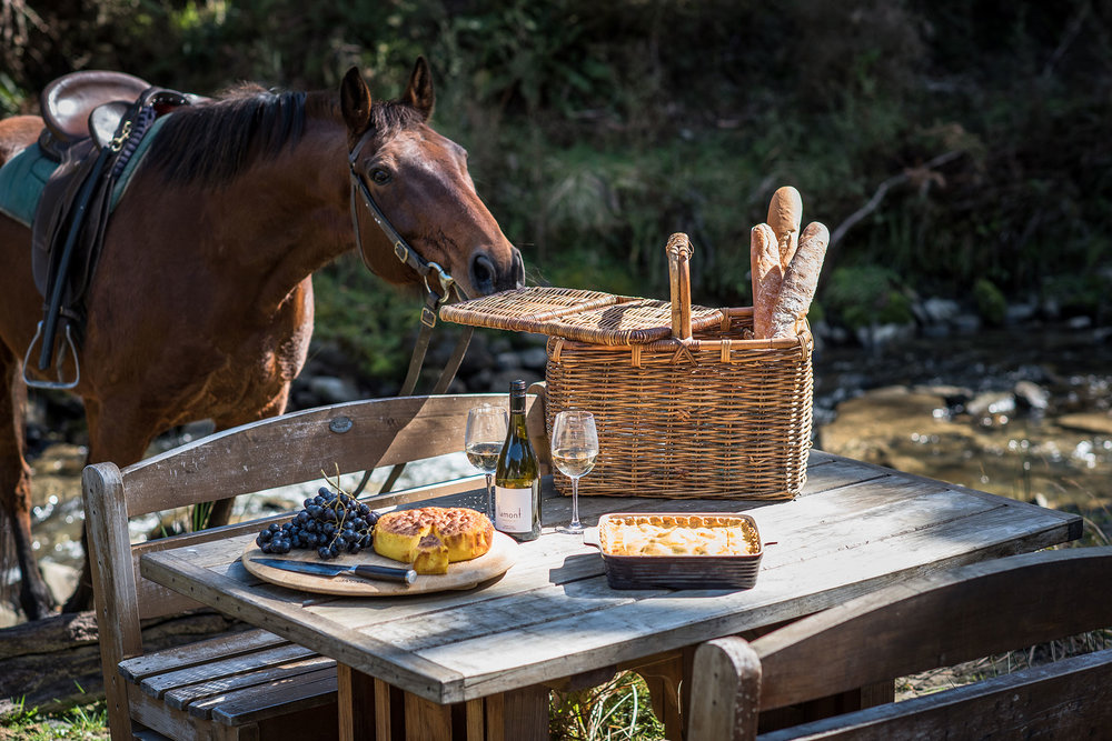 Activity-picnic.jpg