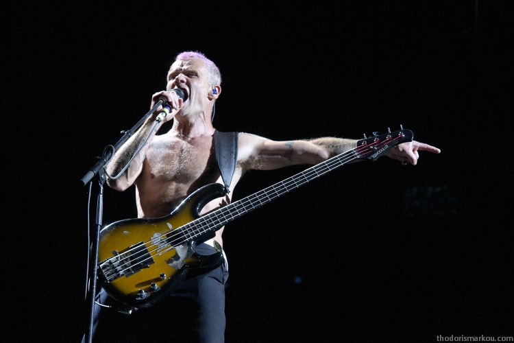 red hot chili peppers - flea