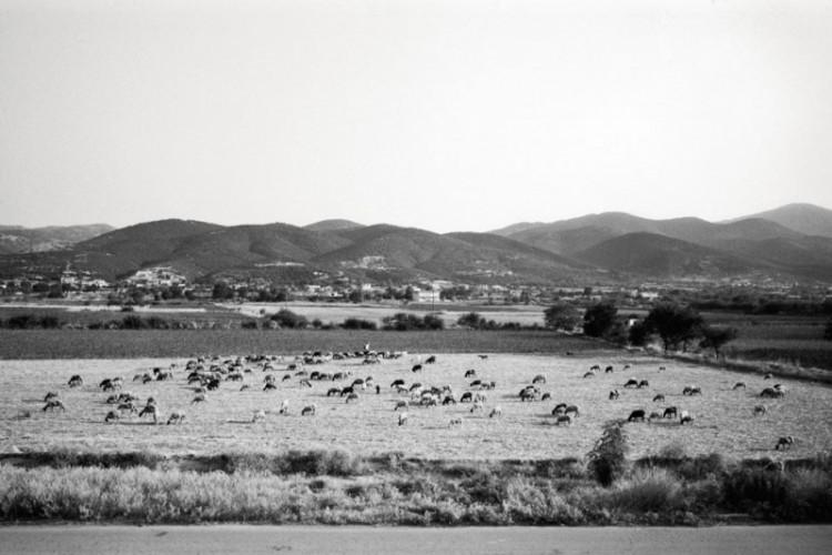 Leica M4 | 28mm/f2 | Ilford Delta 100