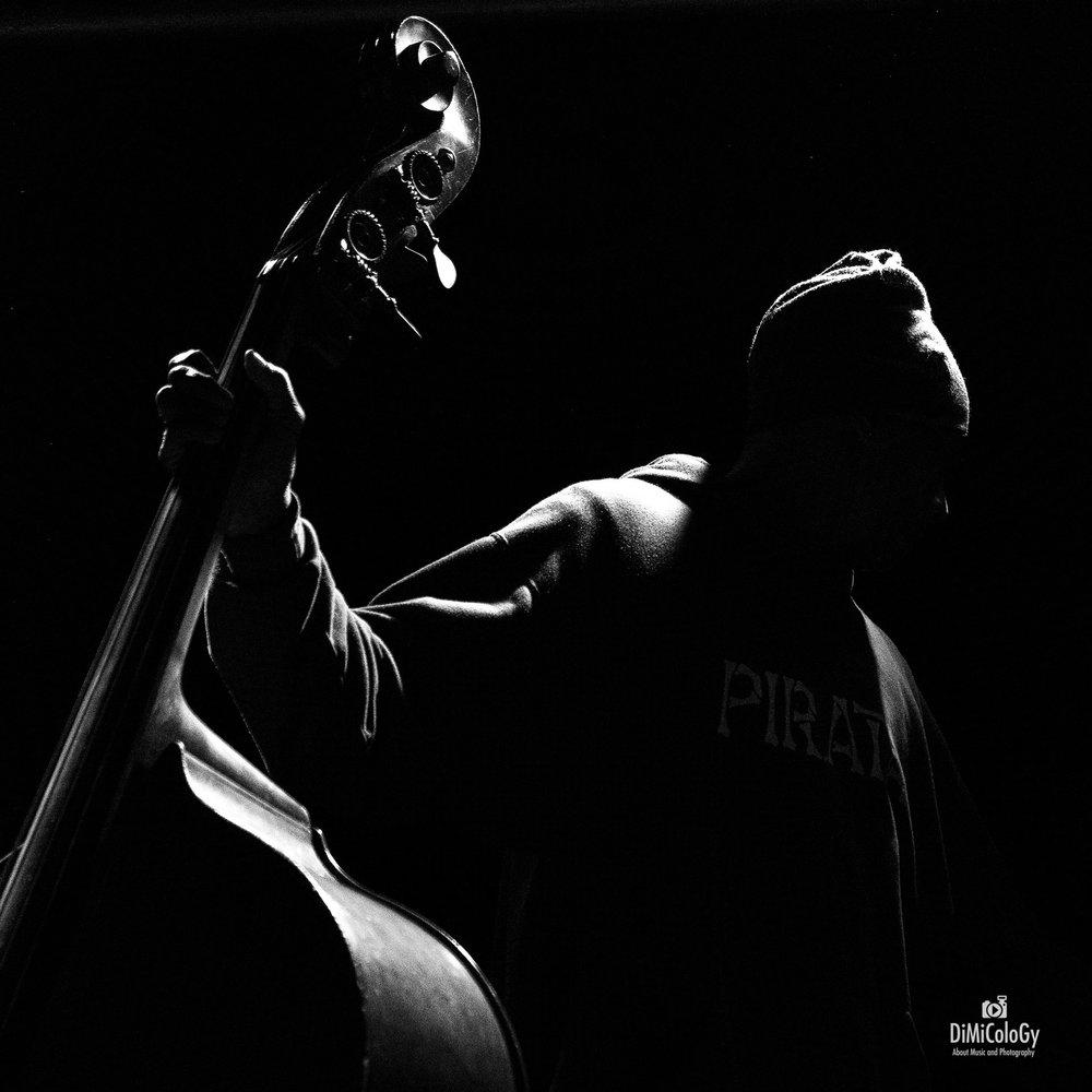 Reggie Washington - Bass Pirata