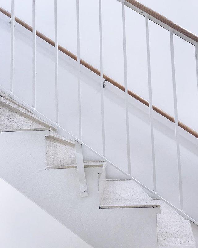 Mästare på att ta (foton på) trapporna.