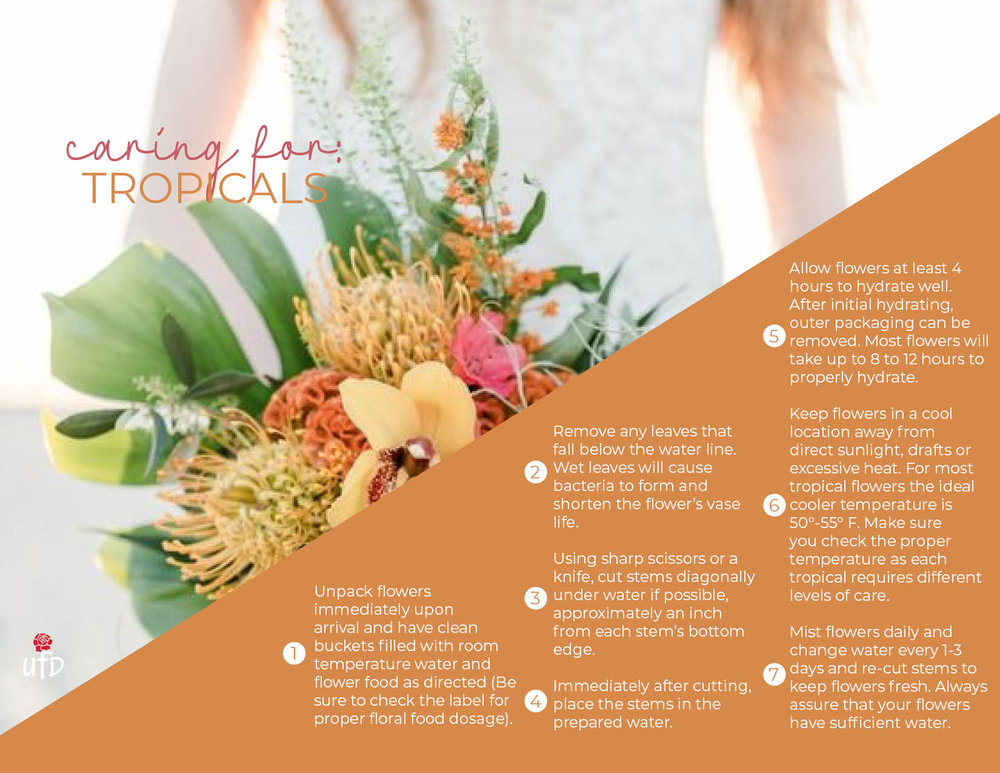 Floral Care-Tropicals3.jpg