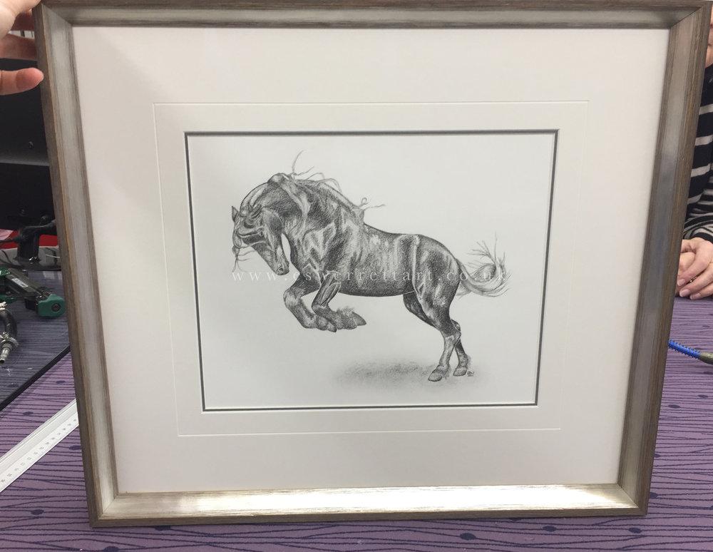 Framed Horse Drawing