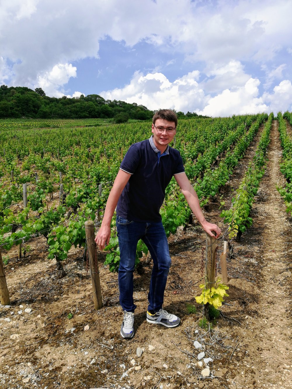Meet the winemaker! - A Romain at Saint-Romain! This young winemaker got his start in 2015 when he started to work at the domain his grandfather André Barolet opened with his grandmother Huguette Pernot years earlier. Thanks to Romain's fresh set of eyes, the domaine is developing and modernizing. The upcoming harvests will be processed by the new press and winery.