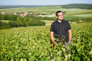 Meet the winemaker! - The vine is this family's passion. Guillaume Lejeune took over the exploitation from his father Jean after having studied in Beaune in a domain near the region of Mercurey. Guillaume brought a little of Burgundy with him to Champagne, and his wines show the influence of these two wine regions.