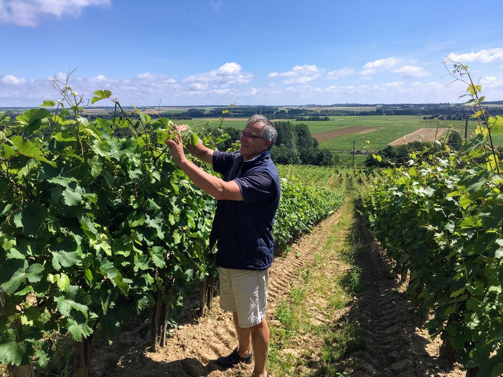 Meet the winemaker! - Domaine Jourdan et Pichard was created in 2012 when the two families Jourdan and Pichard decided to collaborate. Annick and Francis Jourdan took over the day-to-day dealings of the winery which had been run by Philippe Pichard and his family for generations. The two novice winemakers have learned from Philippe and continue the Pichard family tradition to this day. For example, they remain organic, a practice put in place several years before their arrival. They are also biodynamic. Active and curious, Annick and Francis have made the lovely region of Chinon their home forever.