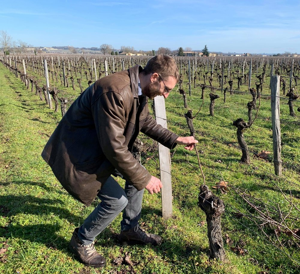 Meet the winemaker! - Julien Sroka arrived as the winemaker of Château de la Cour in Jannuary 2019. He maintains the estate's efforts towards sustainable viticulture practices. Beginning with the High Value Environmental certification in 2012, it is currently undergoing the complicated process of becoming organic. The work in the vineyards and at the winery is truly incredible and has been repeatedly recognized and rewarded.