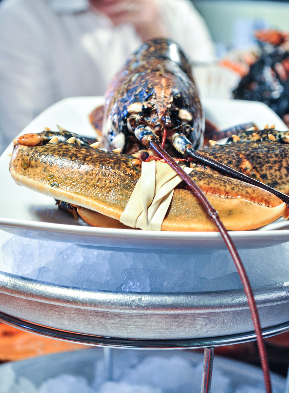 Pescatori-27.jpg