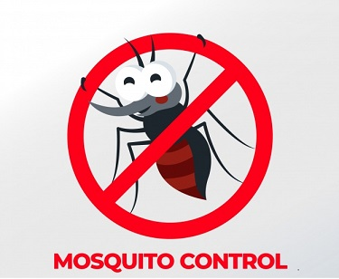 mosquito-control-background_23-2147946642.jpg