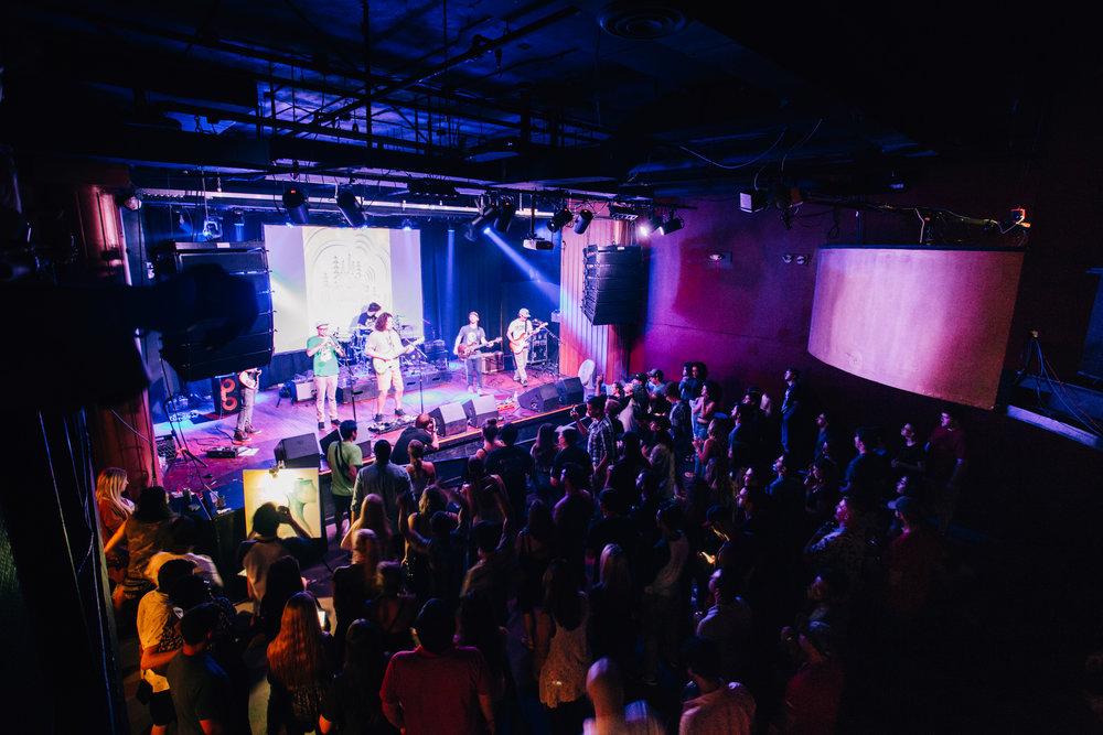 Crowd - Reggae Revival 2.jpg