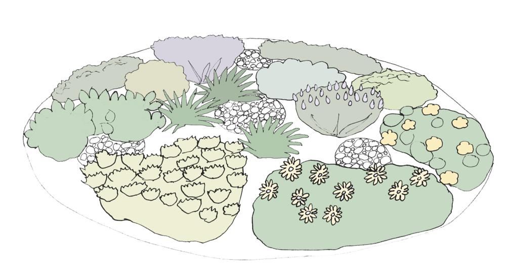 My Own Edible Landscape_The-Oregano-Design.png