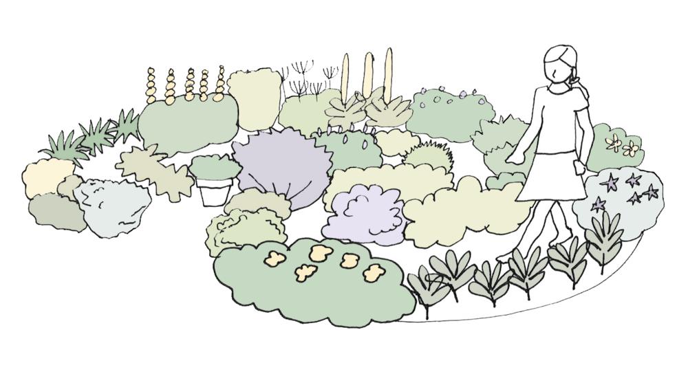 The Rosemary Design -