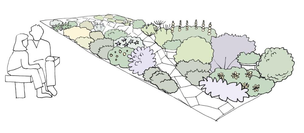 The Violet Design -