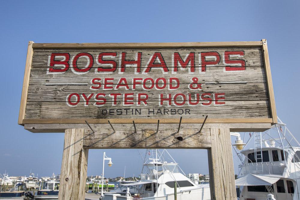 boshamps-first-round-096.JPG