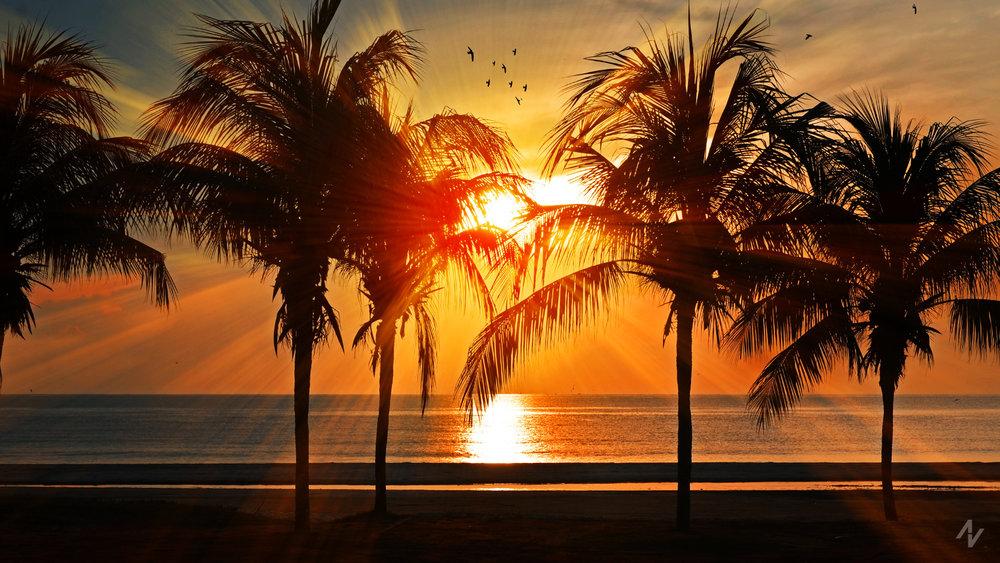 Sundownd.jpg