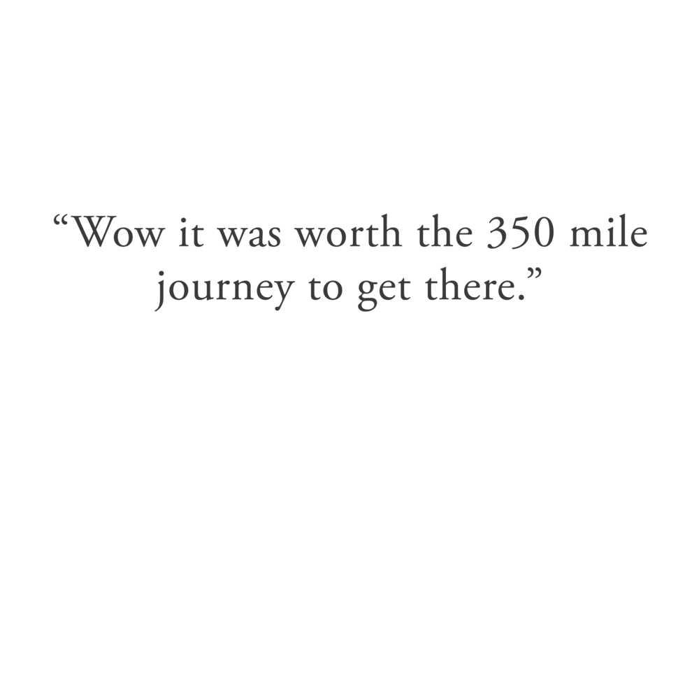Leopallooza quote 2-01.png