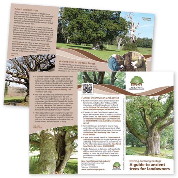Purplelily-Design-leaflet-NFNPA.jpg
