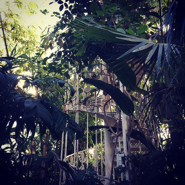 Another day spent @kewgardens.. #garden #kewgardens #nature #natureoninstagram