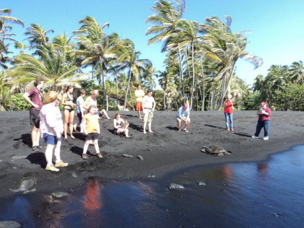 HawaiiTurtleBlackSandBeach.jpg