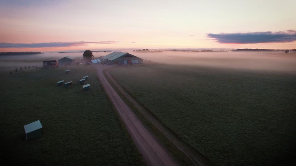 Video 1 - The Farm.00_00_02_04.Still001.png