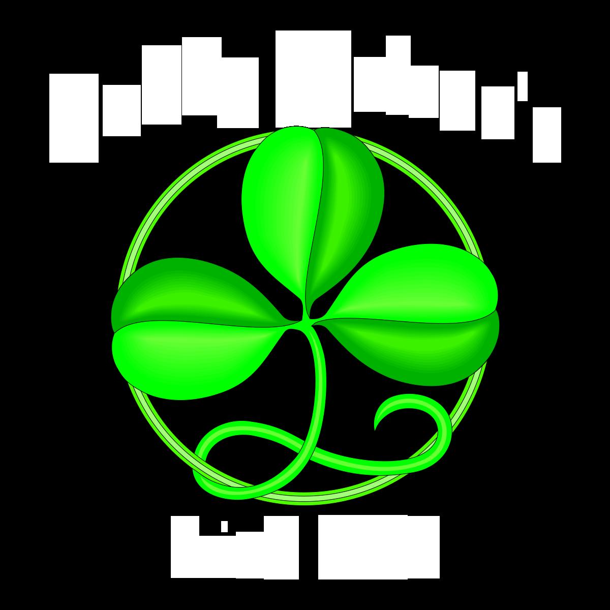 Paddy Malone's Irish Pub