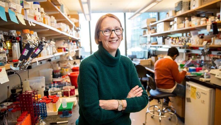 Jeantine Lunshof, PhD, at a Harvard Medical School genetics research lab.