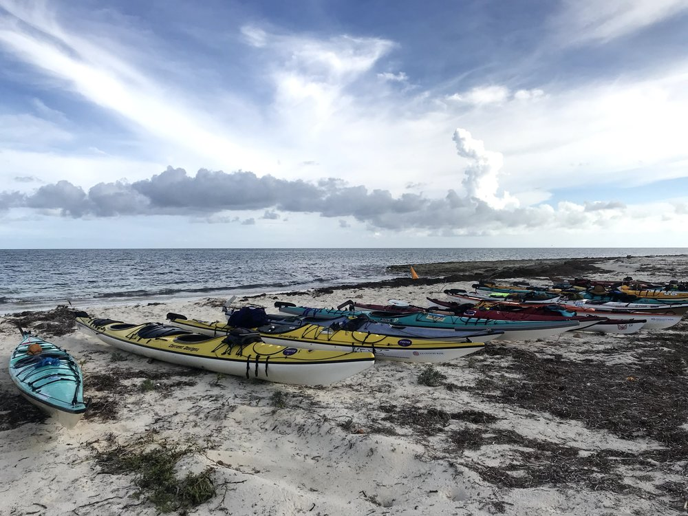 Kayaks on Beach - IMG_9249.jpg
