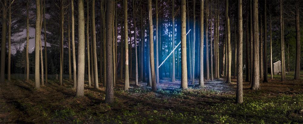 BarryUnderwood_Deford,Michigan_pinesSphere.jpg