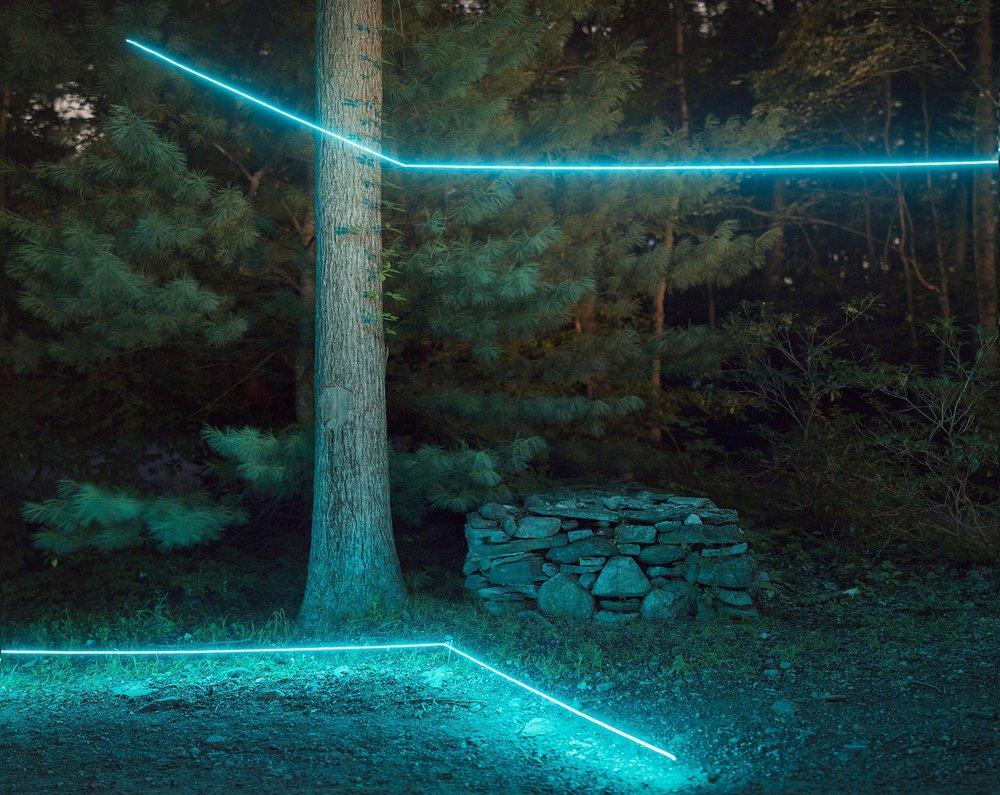 BarryUnderwood_stone-fence_tree.jpg