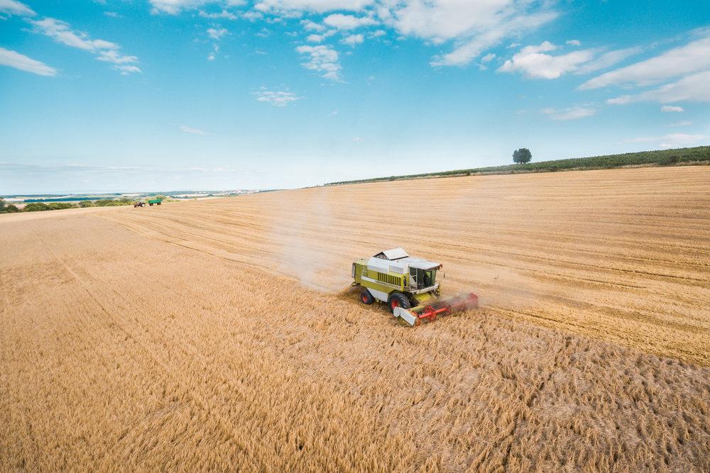 combine-harvester-harvesting-wheat-crops-picjumbo-com.jpg