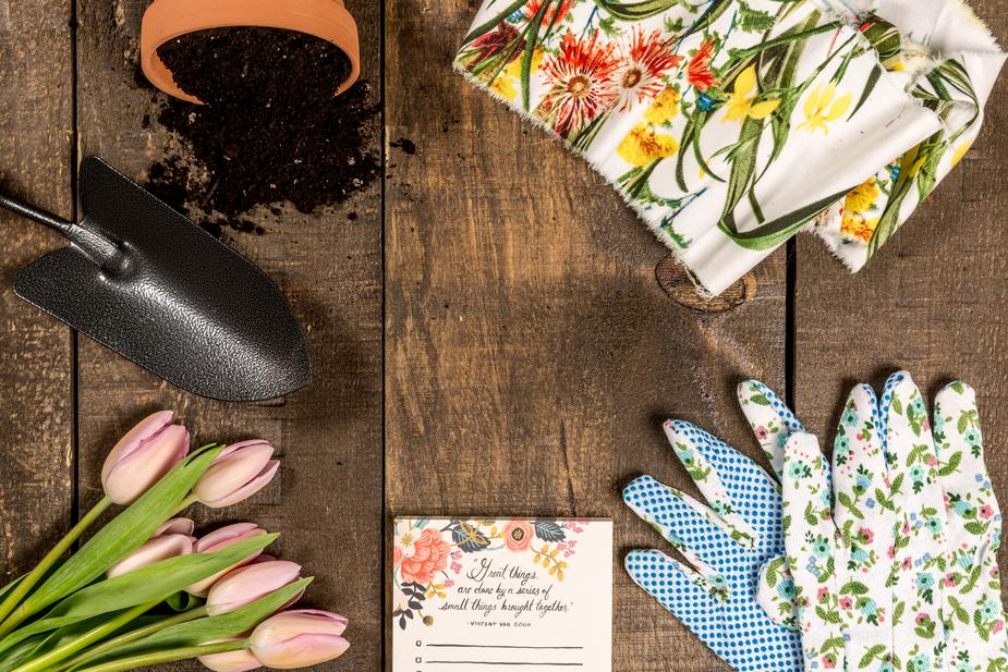 spring-and-garden-theme-flat-lay_925x.jpg