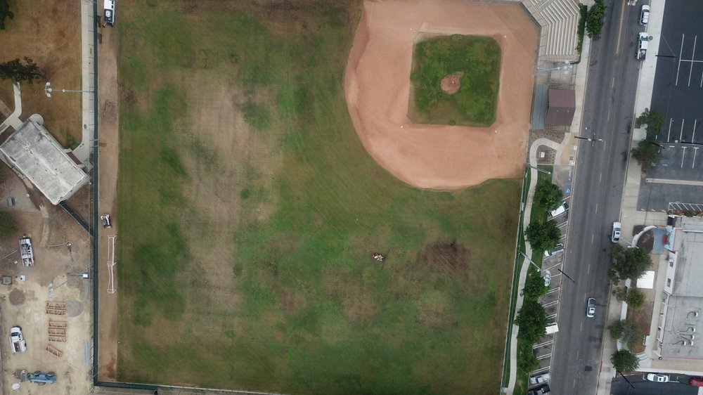 Baseball Field 3 Weeks after WG.jpg