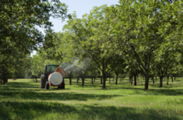 Compost tea is sprayed on the organic trees once every 6 weeks throughout the growing season. Compost tea improves plant health and helps to control insects and diseases.
