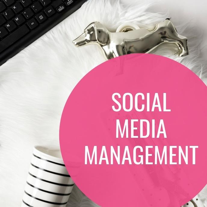 social media management virtual assistant